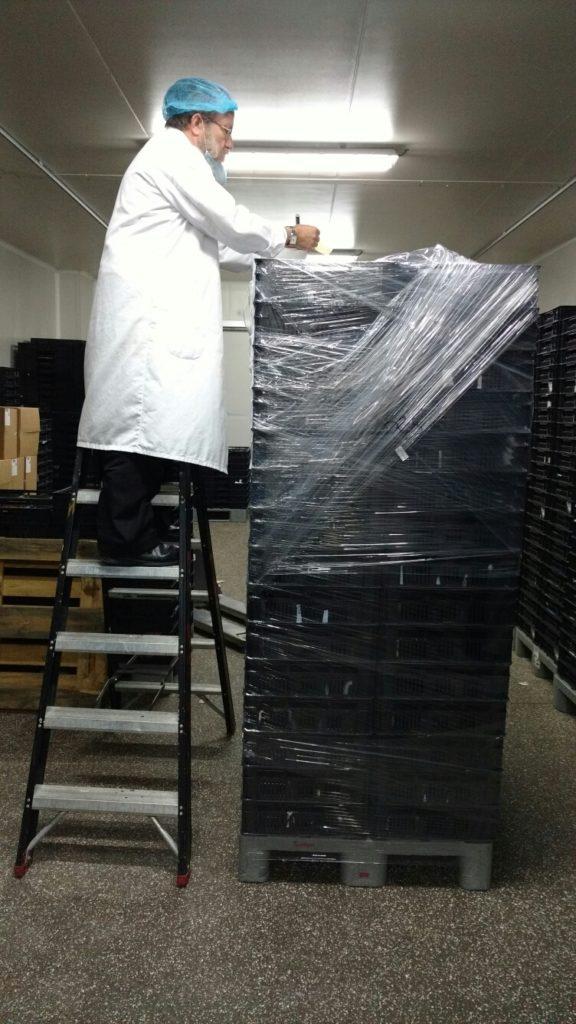 Le Rabbin Gotlib scelle une palette de produits de viande certifiés, pour le transport